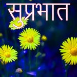 247+ Latest Suprabhat Images With Flowers HD Download
