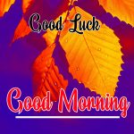 Good Morning Good Luck Wishes Images