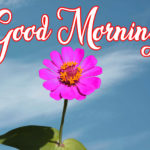 Good Morning Images HD for Whatsapp / Facebook