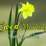 All Good Morning Images