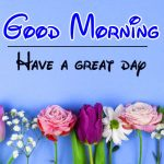 Best Flower Good Moning Wishes Images Download In HD
