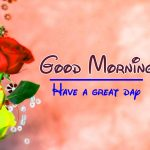 Free Flower Good Moning Wishes Pics Images Download