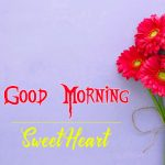 Flower Good Moning Wishes Pics for Facebook
