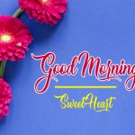 Best Flower Good Moning Wishes Pics Images Download