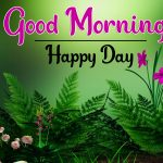 Good Morning Images Download With Nature