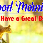 Latest Good Morning Images