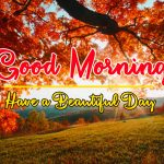 Nature Gud Morning Images
