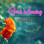 Flower Good Moning Wishes Pics Download