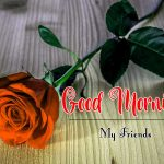 Red Rose Flower Good Moning Wishes pics Download