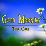 Free Flower Good Moning Wishes pics Download