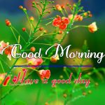 Beautiful Good Morning Pictures Hd