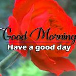 Best Good Morning Images Pictures