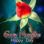 Free Best HD Good Morning Wishes Pics Download