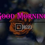 Free New Best HD Good Morning Wishes Images Download