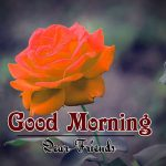 HD Good Morning Wishes Photo for Whatsapp