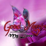 butterfly good morning images pics hd