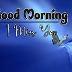 butterfly good morning images pictures for hd