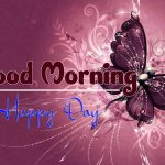 butterfly good morning images pictures hd