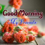 latest rose Good Morning Images pics free download