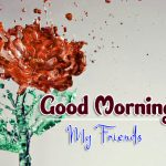 latest rose Good Morning Images pics hd