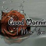 latest rose Good Morning Images pictures free hd