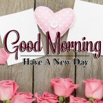 latest rose Good Morning Images pictures pics download