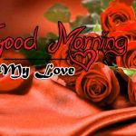 latest rose Good Morning Images wallpaper free download