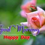 new nice rose good morning images photo hd
