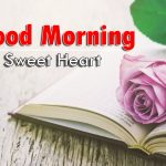 new nice rose good morning images pictures for download