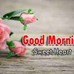 new rose Good Morning Images photo download