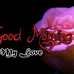 new rose Good Morning Images photo for download