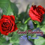 new rose Good Morning Images pictures for girlfriend