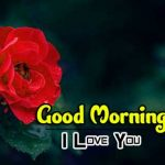 new rose Good Morning Images pictures hd